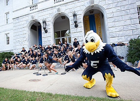 Swoop at orientation
